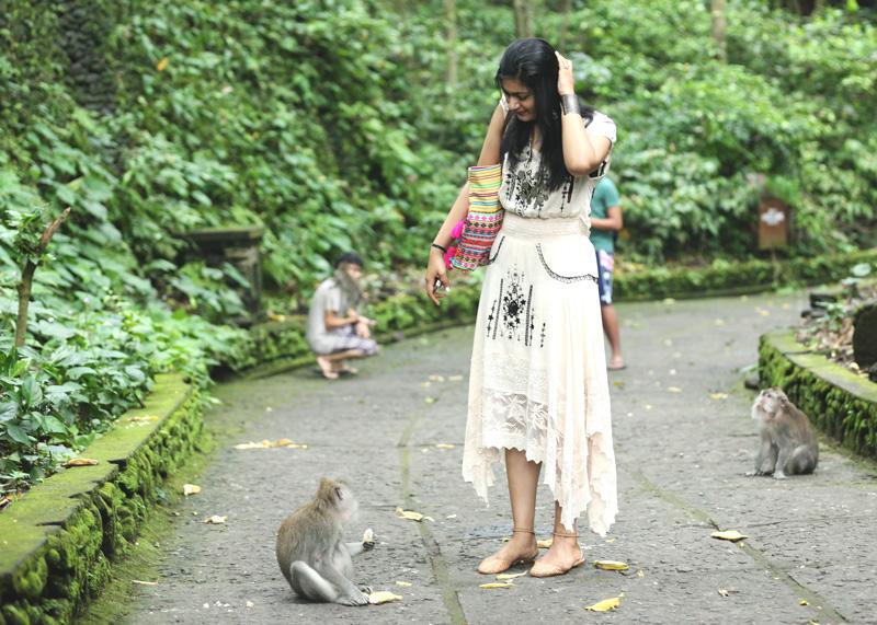 Hello monkey : )
