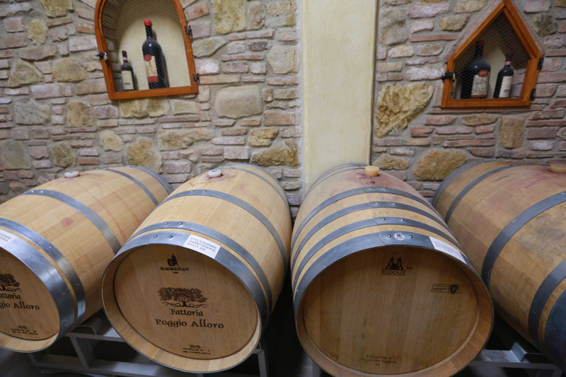 chianti-vineyards-wine-tasting