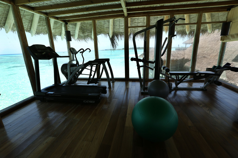 If I had a gym like this, I would workout every damn single day : P
