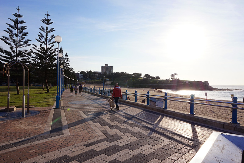coogee-to-bondi-walk