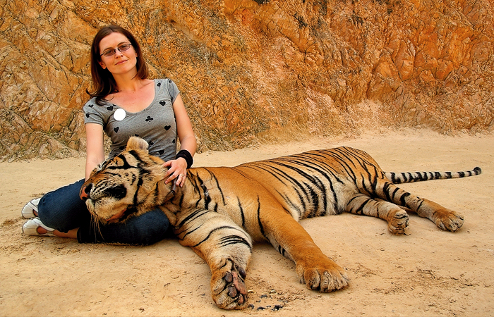 posing with the tigers